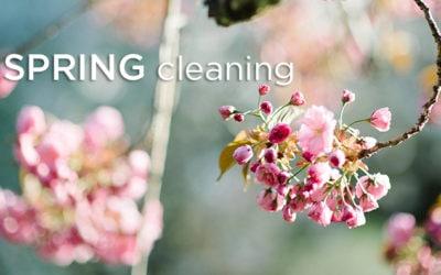 Spring Cleaning, the Ayurvedic Way