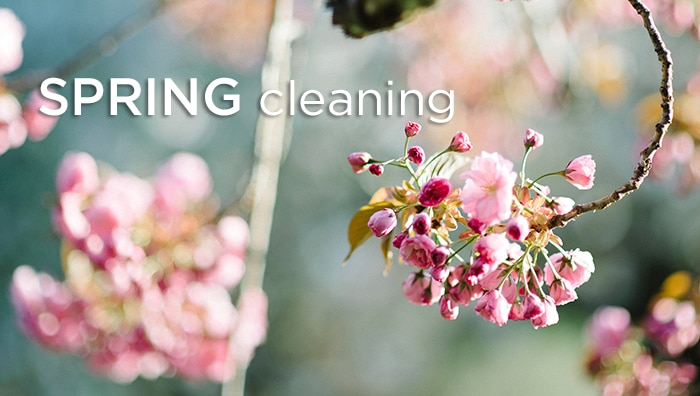 Spring Cleaning, the Ayurvedic Way